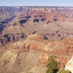 Grand Canyon Bus Tour 50% Off